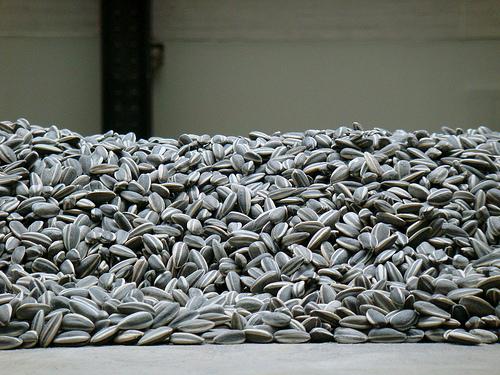 Sunflower Seeds, Tate Modern