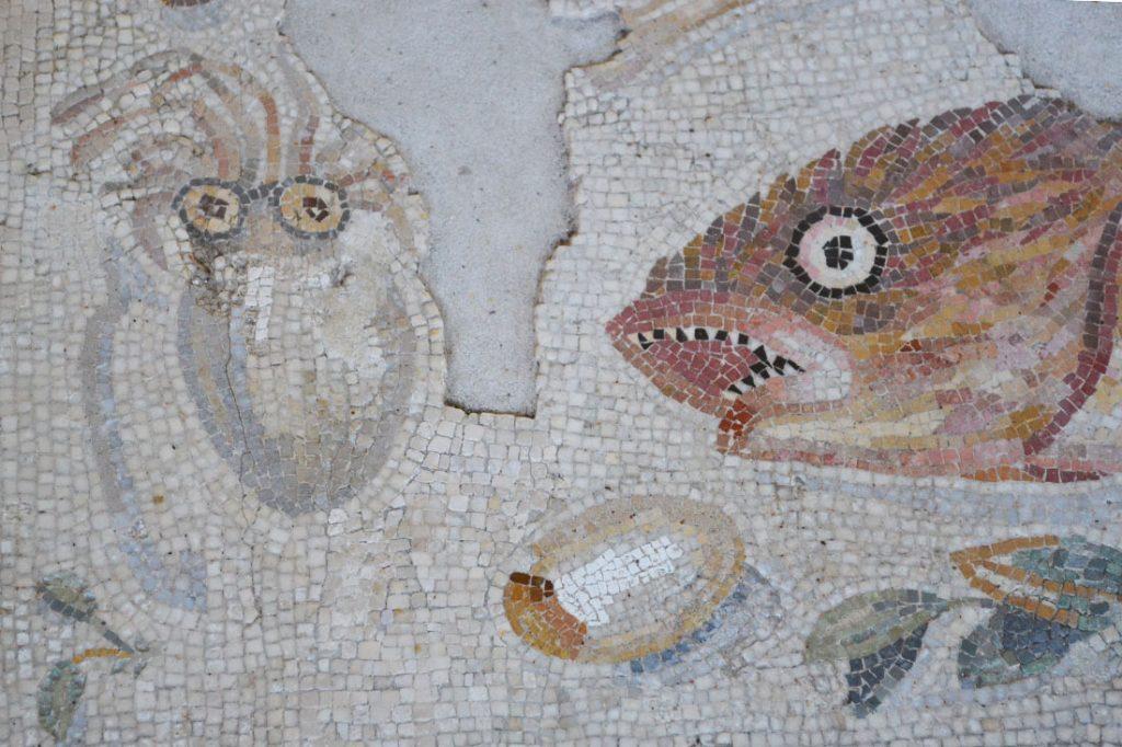 Asarotos oikos pavimento non spazzato particolare del for Mosaico pavimento